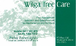 Wilga Tree Care